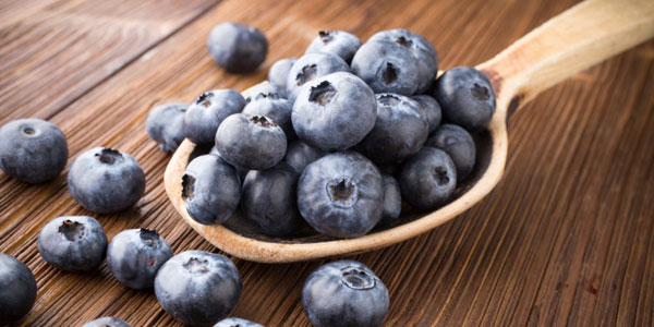 Blueberry Basics