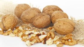 Munch on Walnuts for Healthy Arteries