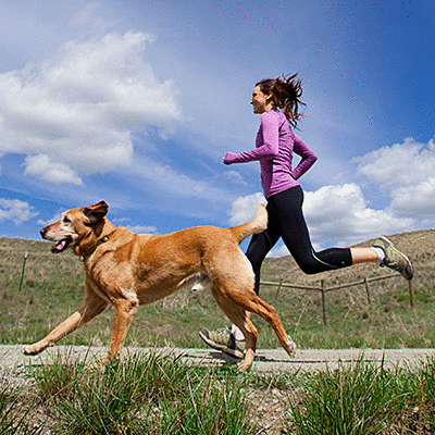 13 Fun Ways to Work Out With Your Dog