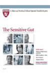 Harvard Medical School The Sensitive Gut
