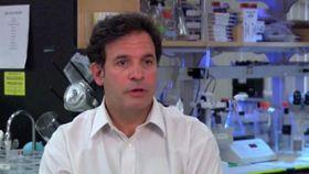 Can Alzheimer's Research Help Us Understand Other Neurological Diseases?