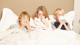 How Many Colds Do Most American Adults Get Each Year?
