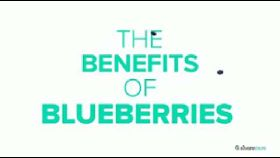What Are the Health Benefits of Blueberries?