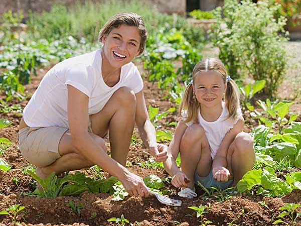 5 Easiest Foods to Grow in Your Garden