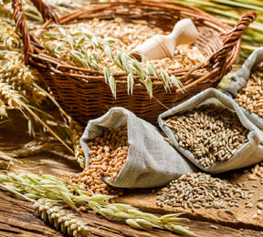 Healthy Eating: Everything You Ever Wanted to Know About Whole Grain Foods