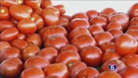 Are Tomatoes Really Good for Us?