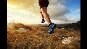 Lose weight fast on paleo diet