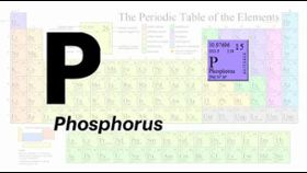 What does phosphorous have to do with kidney disease?