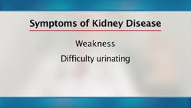 How do I tell if I have kidney disease?