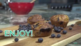 Blueberry Bran Muffin Recipe