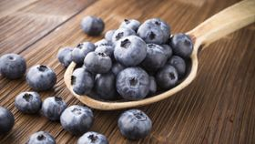Maintain Healthy Blood Sugar with Blueberries