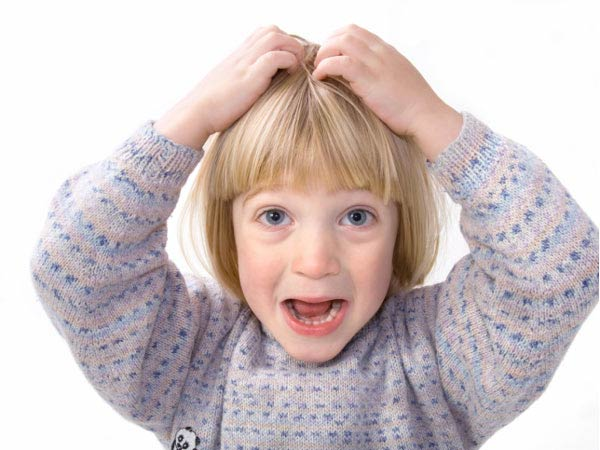 Head Lice: 11 Myths Debunked