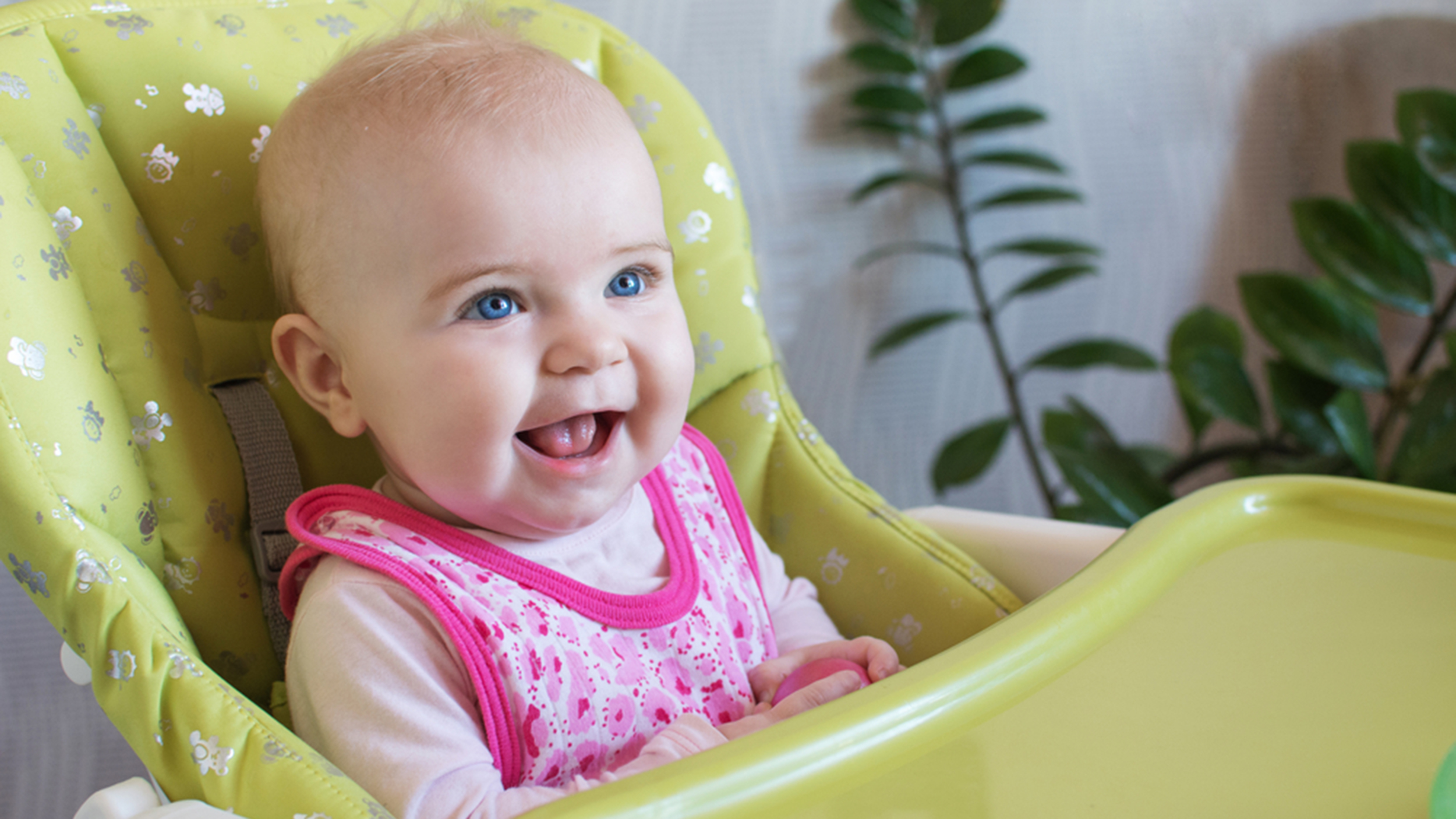 Top 6 finger foods that are safe and delicious for your infant