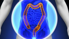 What Is the Most Effective Screening Tool for Colon Cancer?