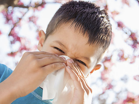 What Can I Do About An Itchy Nose If I Have Allergies?