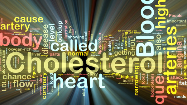 What Is the Function of Cholesterol In Your Arteries?