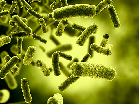 Is Colon Cancer Caused By Bacteria?