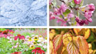 Can the change of seasons or the weather impact my fibromyalgia symptoms?