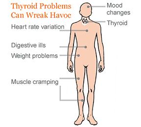Symptoms of Thyroid Problems